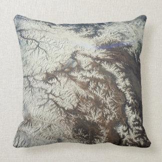 Satellite Image Throw Pillows
