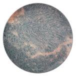 Satellite View 2 Melamine Plate