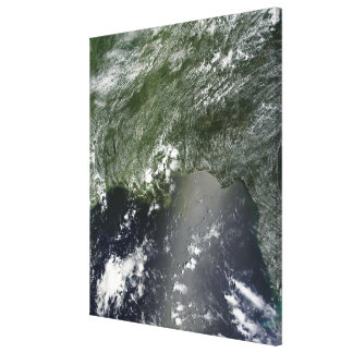 Satellite view of the Gulf of Mexico 2 Canvas Print