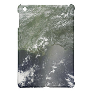 Satellite view of the Gulf of Mexico 2 iPad Mini Cases