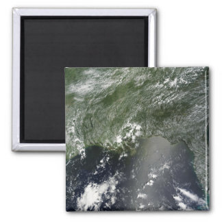 Satellite view of the Gulf of Mexico 2 Magnet