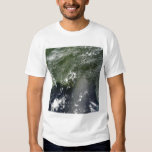 Satellite view of the Gulf of Mexico 2 T-shirt