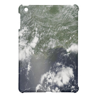 Satellite view of the Gulf of Mexico iPad Mini Cases