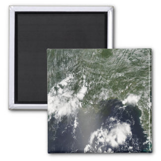 Satellite view of the Gulf of Mexico Magnet