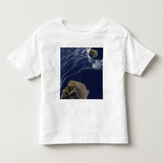 Satellite view of the Prince Edward Islands T Shirts
