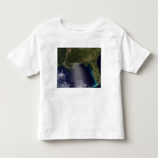 Satellite view of the Southeastern United State 2 Toddler T-shirt