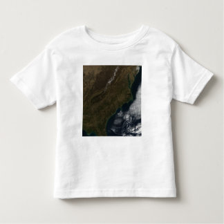 Satellite view of the Southeastern United State Toddler T-shirt