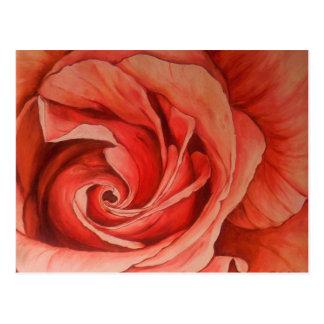 Satin Magic Rose Postcard