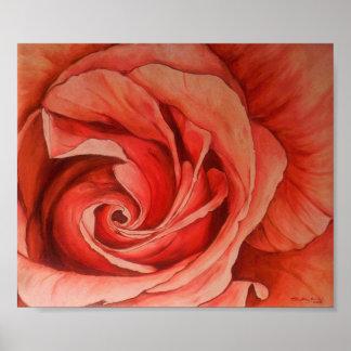 Satin Magic Rose Poster