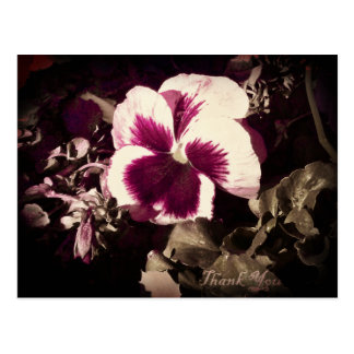 Saturated Flower Postcard