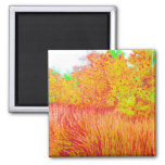 Saturated grass tree florida background magnet