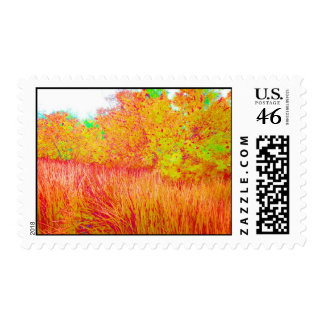 Saturated grass tree florida background stamp
