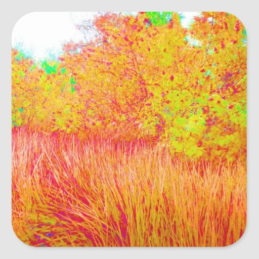 Saturated grass tree florida background stickers