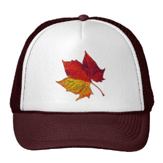 Saturated Sycamore Trucker Hat