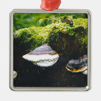 Saturn Mushrooms Square Metal Christmas Ornament
