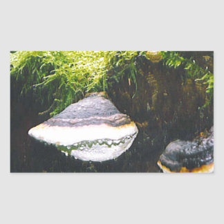 Saturn Mushrooms Rectangular Sticker