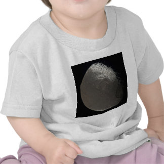 Saturn's 3rd Largest Moon Iapetus Taken by Cassini T Shirt