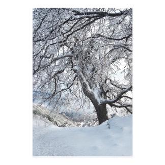Sauce del invierno impresión fotográfica