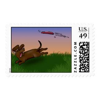 saucer dog postage
