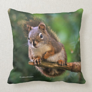 Saucy Red Squirrel in the Fir Throw Pillow