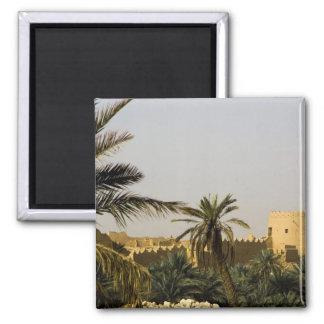 Saudi Arabia, Riyad, Al-Diriya old town of Saud Magnets