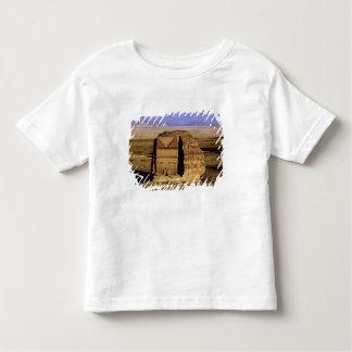 Saudi Arabia, site of Madain Saleh, ancient Toddler T-shirt