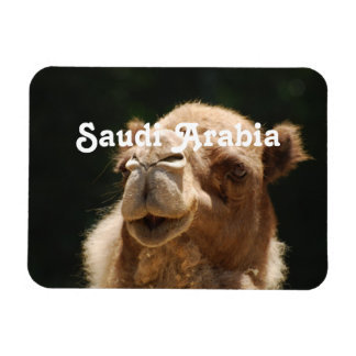 Saudi Arabian Camel Magnet