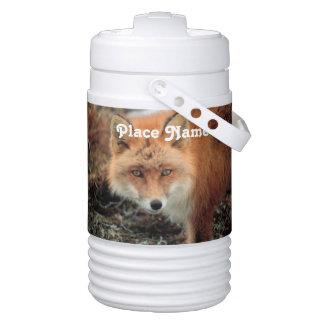 Saudi Arabian Fox Igloo Beverage Dispenser