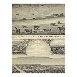 Saunders County Farms, Nebraska Postcard