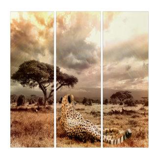 Savanna Cheetah Triptych