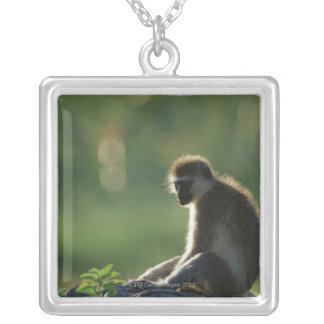 Savanna Monkey Silver Plated Necklace