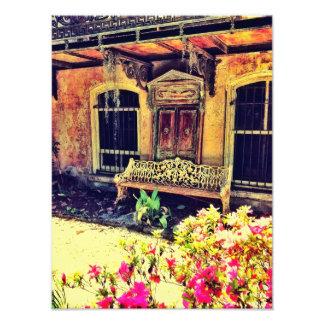 Savannah Bench Photo Print
