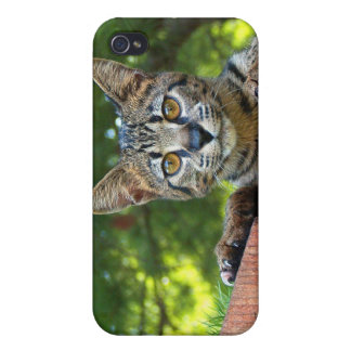 Savannah Cat 4  Covers For iPhone 4