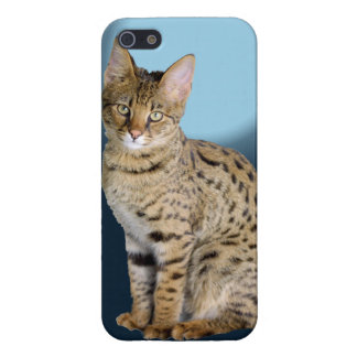 Savannah Cat Case For iPhone SE/5/5s