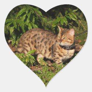 Savannah Cat Heart Sticker