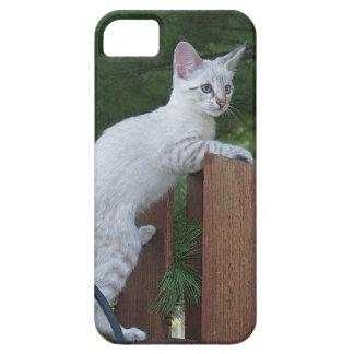 Savannah Cat  iPhone 5 iPhone SE/5/5s Case