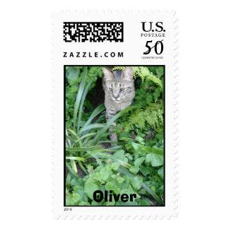 Savannah Cat Postage