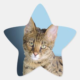 Savannah Cat Sticker