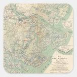 Savannah, Ga and vicinity Square Stickers