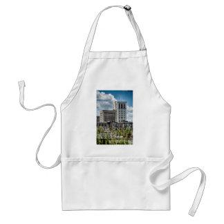 savannah georgia historic architecture ancient cit adult apron