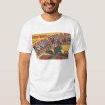 Savannah, Georgia (Historic) - Large Letter T Shirt
