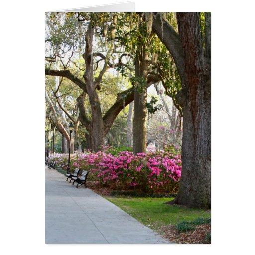 Savannah Georgia in Spring Forsyth Park Azaleas Oa Greeting Card