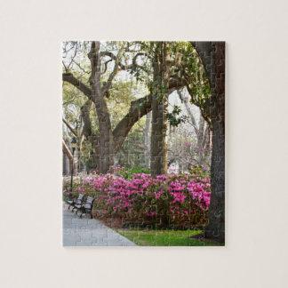 Savannah Georgia in Spring Forsyth Park Azaleas Oa Jigsaw Puzzles