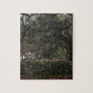 Savannah Georgia Jigsaw Puzzle