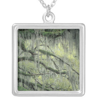 Savannah, Georgia, Live Oak tree draped with Silver Plated Necklace