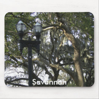 Savannah georgia mouse pad