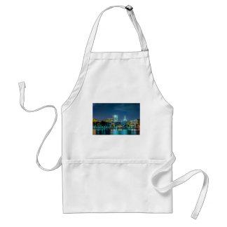 savannah georgia town usa waterfront evening river adult apron