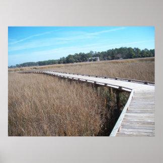 Savannah Georgia Tybee Island Path Trail Poster GA