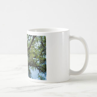 Savannah Live Oak And Spanish Moss Coffee Mug