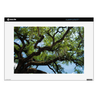 """Savannah Live Oak And Spanish Moss Decal For 15"""" Laptop"""